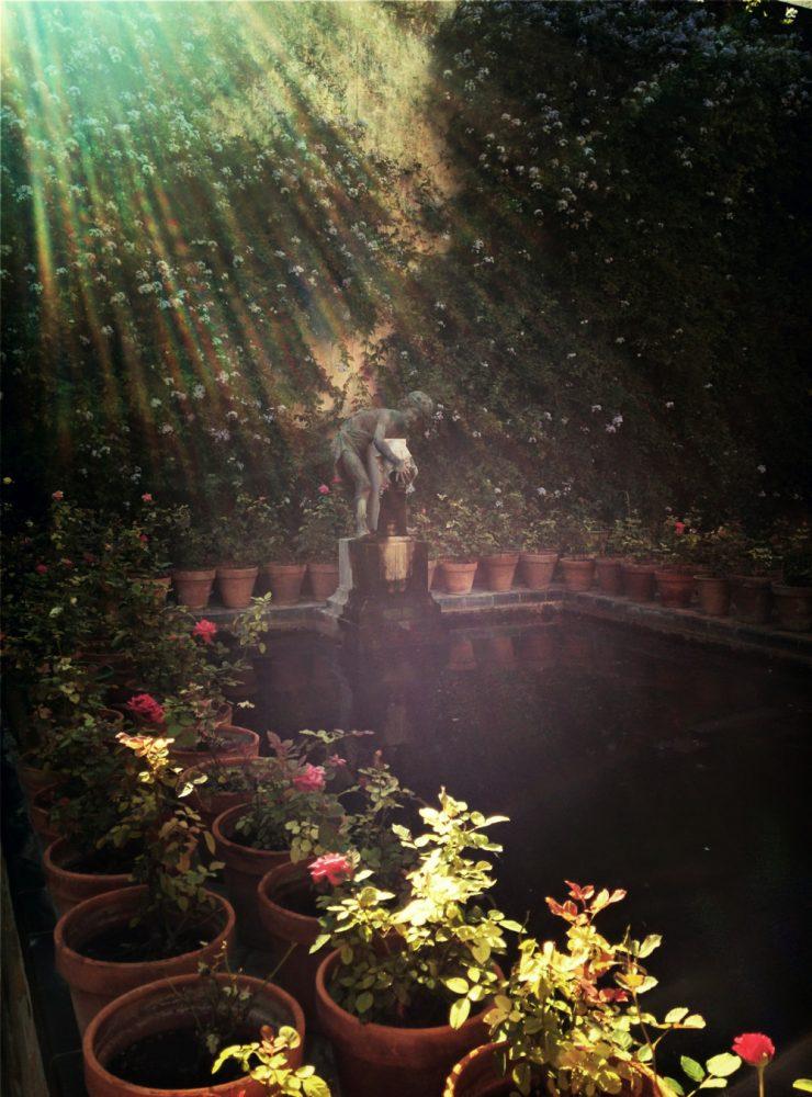 jardines en sevilla
